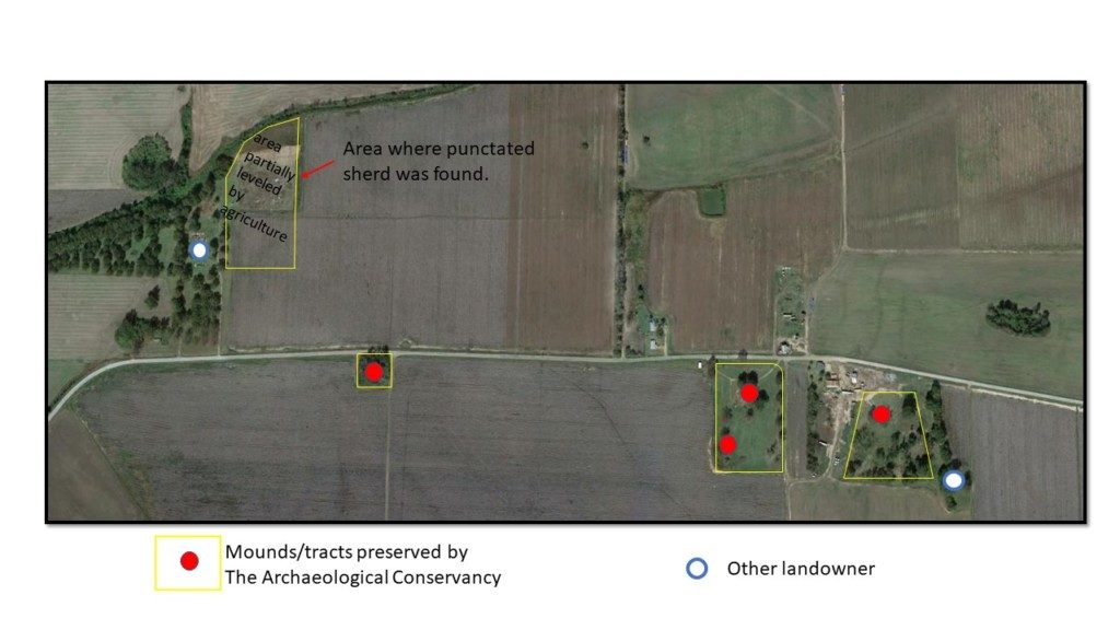 The property that The Archaeology Conservancy has been able to protect of the Carson Mound site.