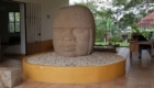 San Lorenzo Olmec Head.Photo: The Archaeological Conservancy.