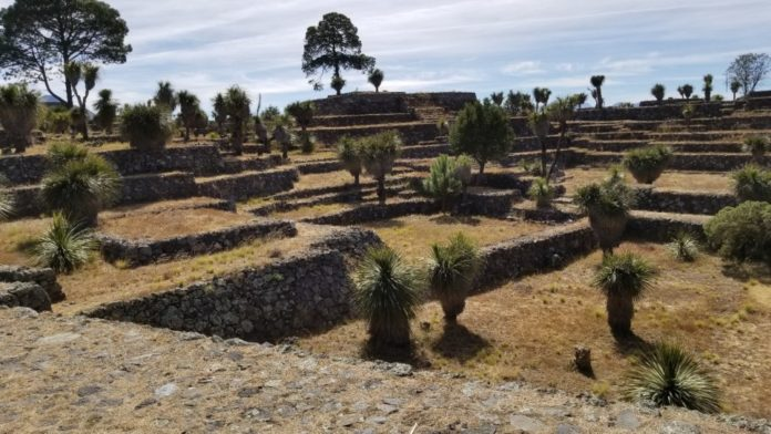The mysterious and stunning archaeological Capitol of Cantona.