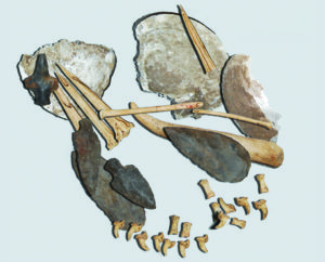 A reconstruction of a Late Archaic (ca. 3000 B.C.) bundle containing possible tattoo implements from the Fernvale site in central Tennessee. In addition to stone tools, this cluster of artifacts included stacked bivalve shells holding pigment residue, polished and ochre-stained bone tools for mixing and applying pigment, and three sharpened turkey bone awls. Wear patterns and pigment staining on the awls suggest they were used to tattoo. All of these materials were recovered as a discrete cluster, and the presence of canid toes along one edge of the bundle suggests they may have originally been held within a wrapping made from wolf, dog, or coyote skin with attached feet. Credit: Aaron Deter-Wolf.
