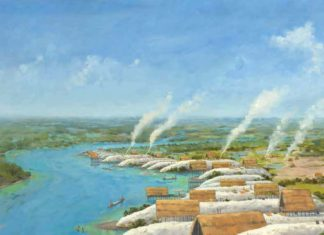 This illustration of numerous shell mounds at the Turner River Shellworks site in Ten Thousand Islands, Florida, is based on archaeological evidence.Credit: MARTIN PATE, COURTESY MARGO SCHWADRON, NPS