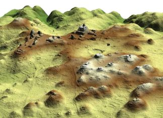 This LiDAR image of the center of Caracol reveals pyramids, plazas, agricultural terraces, roadways, and other features. Credit: COURTESY OF ARLEN AND DIANE CHASE, CARACOL ARCHAEOLOGICAL PROJECT, UNIVERSITY OF NEVADA, LAS VEGAS.