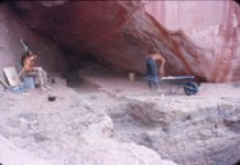 Excavations in progress, Benchmark Cave, 1958. Don Fowler taking notes, on left. Photo Courtesy the Museum of Natural History of Utah.