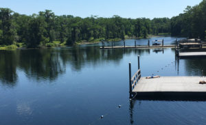 The boat dock in the middle of this photo is of the Wakulla River is the point of departure for glass-bottom boat tours. Divers will be searching the waters for mastodon remains later this year. Credit: Tamara Jager Stewart