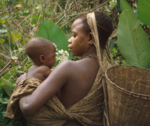 Lecture | Is the Central African Rainforest Pristine? @ University of Nevada - Reno