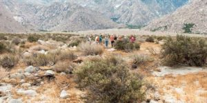 First Multi-state Site Stewardship Workshop @ Nevada State Museum at the Spring Reserve